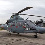 Eurocopter ES365 Dauphin 2 thumbnail