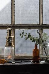 (esmeecadoni) Tags: window netherlands beautifulearth sony europe sunlight indoor simple minimal simplicity minimalistic littlethings light holland morning bokeh photography green leaves backlight nature stilllife still candle lantern