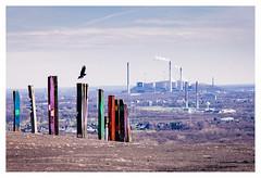 pit dump art (rcfed) Tags: hasselblad digital mediumformat industrial landscape art cloud sky color
