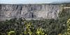 Caldera Wall (wyojones) Tags: hawaii hawaiivolcanoesnationalpark kīlauea kīlaueassummitcrater caldera cliffs crater volcano trees taluscone