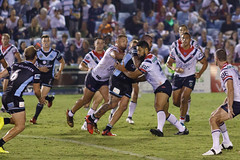 Sharks v Roosters Round 5 2018_137.jpg (alzak) Tags: 2018 chooks cronulla eastern easts league nrl national roosters rugby sharks suburbs action sport sports sydney australia