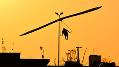 Flying thru the city (André Felipe Carvalho) Tags: asa delta vôo livre campeonato mundial 2017 brasilia