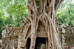 Ta Som Temple, Siem Reap, Cambodia (January 2018) (H_E_L) Tags: hel cambodia siemreap angkor khmer unesco unescoworldheritage architecture asia temple buddhist buddhism tasomtemple tasom