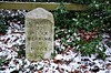 Bracknell milestone (stavioni) Tags: bracknell milestone marker stone bench mark benchmark