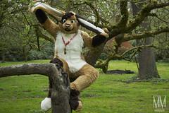 _DSC0045 (MM Furry Photo) Tags: bunny rabbit fursuit fursuiting portrait critterfactory pantoffel