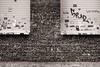 Chewing Gum Monument (Tom Levold (www.levold.de/photosphere)) Tags: cologne fujixt2 köln street xf18135mm sw bw wall chewinggum wand kaugummi oskarjägerstr