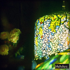 Light in the Night (Jolie B Studios) Tags: longexposure