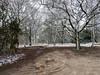 St Marthas on a snowy St Patricks Day-E3170242 (tony.rummery) Tags: em10 guildford landscape mft microfourthirds omd olympus path snow stmarthas surreyhills trees winter albury england unitedkingdom gb