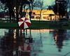 California March Rain (Boyce Duprey) Tags: rain california tulare wet storm tropicalflow umbrella
