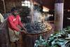 Processing Eucalyptus Leaves for Oil at the High Field Tea Estate in Coonoor (amanda & allan) Tags: coonoor nilgirihills teaplantation teaplantations teaestate tamilnadu india highfieldteafactory teafactory eucalyptus highfield