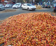Pommes (herve.charpentier) Tags: apple pommes rue street town ville toulouse voitures cars embouteillage traffic jam