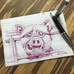 Napkin pig - gargoyle no. 11 (schunky_monkey) Tags: illustration art penandink ink pen fountainpen drawing draw sketching sketch napkin architecture stone statue church abbey england oxfordshire abingdonabbey gargoyle pig