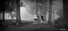 Onderweg naar ........ (Digifred.) Tags: digifred 2017 woerden nikon1j5 nederland netherlands holland straat street city grachten streetphotography toeristen candid girl girls meisjes blackwhite blackandwhite monochrome people portret portrait bos cycling bicycle fiets bike