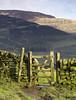 Pennine Way (l4ts) Tags: landscape derbyshire peakdistrict darkpeak gritstone edale pennineway gate drystonewalls kinderscout nationaltrail