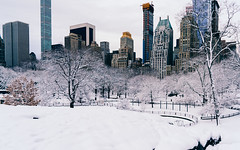 Every silver lining's got a touch of grey. (RomanK Photography) Tags: centralpark landscape manhattan nyc newyorkcity cityscape morning snow snowstorm sonyalpha winter