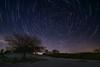 Stars & snow (teredura58) Tags: circumpolar opakua startril nieve snow alava