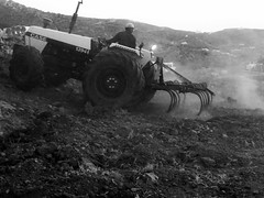 Plow the day away (www.thalassinos.net) Tags: white excavations excavator thalassinos thalassinosarchitect tractorsdiggers island parosisland paros plow plowing plowingmachine architect greece grey cyclades black blackandwhite machines