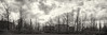 crib-point-2941-6-ps-w (pw-pix) Tags: dark grim bleak stark gloomy abandoned empty disused burnt trees tanks grass plants conifers 28 tank28 30 tank30 clouds sky dramatic oilrefinery closed overgrown panorama panoramic bw blackandwhite monochrome toned formercribpointoilrefinery formerbprefinery cribpoint westernport shireofmornington morningtonpeninsula victoria australia peterwilliams pwpix wwwpwpixstudio pwpixstudio