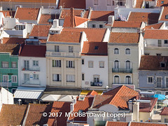 Portugal 2017-9021162-2 (myobb (David Lopes)) Tags: 2017 allrightsreserved europe nazare portugal architecture buildingexterior buildingstructure copyrighted day daylight highangleview outdoor roof rooftile smalltown sunlight touristattraction townscape traveldestination vacation village ©2017davidlopes