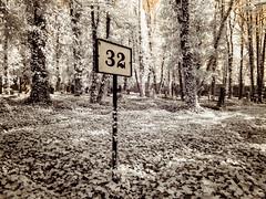 32 (Adventures in Infrared) (Torsten Reimer) Tags: creeper olympusepl5 newjewishcemetery friedhof czechrepublic europa tschechien czechia cemetery trees grabmal gravestones infrared graveyard grabsteine graves prag overgrown europe sign infrarot prague 32 cz