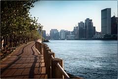 Roosevelt Island (kareszzz) Tags: nyc ny newyork us usa canon6d ef24105 city cityscape landscape eastriver photowalk