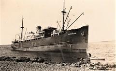 'Minnipa' aground off Boston Island, S.A. - 1928 (Aussie~mobs) Tags: 1928 ship minnipa aground shipswreck bostonisland portlincoln vintage southaustralia harleykwilliams aussiemobs
