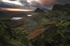 At the Begininng (DBPhotographe) Tags: scotland uk isle skye quiraing trotternish ridge tree sunrise autumn hill