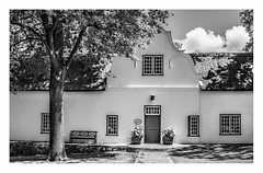 Cape Dutch (Daniela 59) Tags: architecture capedutch house building historic wall wednesdaywalls rustenbergwineestate tree oaktree blackandwhite stellenbosch southafrica 7dayswithflickr thursdaythemebw danielaruppel