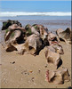 sea sculpture (mhobl) Tags: rocks sea meer küste steine felsen sand morocco