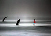The Ice Stayed Hard (coollessons2004) Tags: winter spring ice fog mist girl red