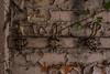numbers (tbolt-photography.com) Tags: derelict derp derelictplaces derelictbuildings decay abandoned abandonedplaces abandonedbuildings urbex urbandecay nikon