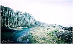 Basalt Columns Of The Giants Causeway, Northern Ireland (Peter Greenway) Tags: nature ireland flickr worldheritagesite basalt sky giantscauseway sea rockformation countyantrim thegiantscauseway northernireland rocks geology seacape basaltcolumns theemeraldisle petrified volcanic