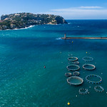 Aerial photo of fish farms in Puerto de Andraitx, Mallorca thumbnail