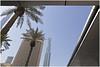 dubai 15 (beauty of all things) Tags: vae uae dubai cities palms palmen