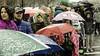 parade-33 (carl_nielsen_photo) Tags: parade stpatricksday rain snow wet umbrella street people