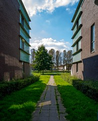 _DSC0912 (durr-architect) Tags: almere modern housing lake water statue art light building tree sky grass wall architecture