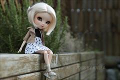 Plume - FC (Lovely-kalea) Tags: pullip full custom wig monique