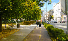 "A fine, safe combination: Road, hedge, bike path and sidewalk (UrbanGrammar) Tags: urban ""new urban"" urbanism streets traffic ""pedestrian realm"" ""fused grid"" zones"" ""main street"" culdesac loop neighbourhood ""street patterns"" ""healthy urbanism"" mobility accessibility tranquility safety delight infrastructure connectivity ""urban park"" carfree adaptation mixeduse budapest"