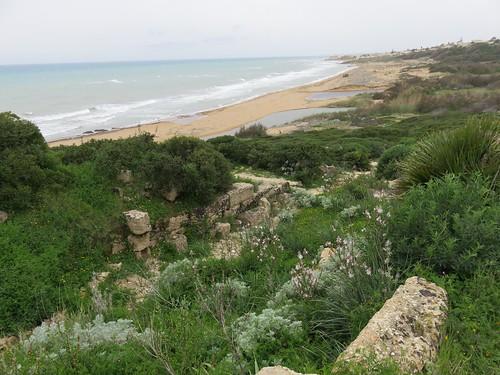 Blick zur Küste , NGID851378231