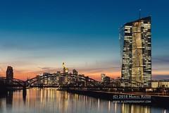 Frankfurt (GLEZ Photography) Tags: skyscraper bridge citylights lights main fluss river sunset skyline zentralbank ecb ezb marcelkaiser frankfurt