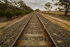train-tracks to Ararat (gerryhk) Tags: langighiran westernvictoria tracks traintracks straight lonely lost goingnotcoming