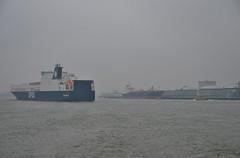 Gardenia Seaways (Hugo Sluimer) Tags: vlaardingen portofrotterdam port haven havenvlaardingen onzehaven nlrtm nl nederland zuidholland holland