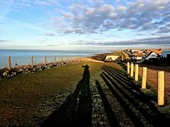 The Long Shadow (bimbler2009) Tags: olympustg4 sea grass clifftop sky urban landscape dawn sunrise shadow repetitiveobjects light cloud