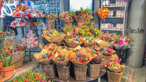 Flower shop, Station Utrecht Centraal, the Netherlands - 0711