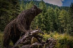 Ode to the Bear (Eric@focus) Tags: bear twigs ode italy orso ours wicker animalifatticonramiintrecciati bär beer vlechtwerk oso нести 熊 耐えます mauriziomisseroni animalidelbosco artist local