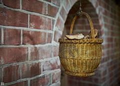 the breadbasket (blattboldt) Tags: basket korb bread brot sonyilce7sm2 alpha7sm2 voigtländernokton40mm12aspherical emount still germany lübeck hansemuseum pan
