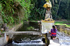 Praying At Pura Gunung Kawi Temple (itchypaws) Tags: pura gunung kawi temple asia indonesia bali 2017 holiday vacation august island