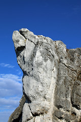 IMG_1706 (Joan van der Wereld) Tags: polishjurassicupland nature naturephotography landscape rock limestone hilly boulder poland south