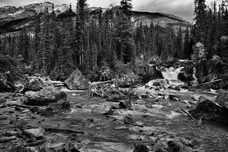 A Revisit to the Meeting of the Waters (Black & White, Yoho National Park)