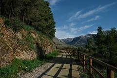 Pista ciclabile. Castrovillari (♥iana♥) Tags: castrovillari vigne morano calabria sud italia montagne mounrains